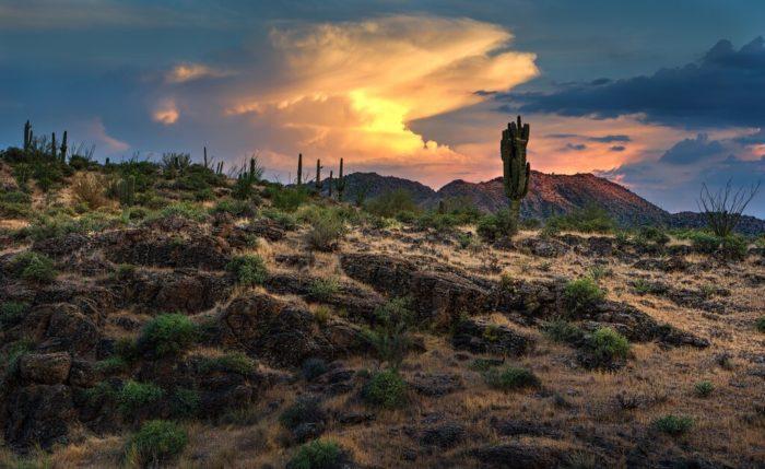 gilbert arizona